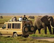 12 Days Uganda Rwanda Wildlife Safari
