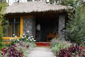 Le Bambou Gorilla Village