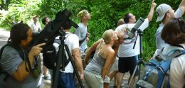 How to choose a group tour
