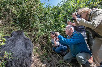 Virtual gorilla ceremony in Rwanda