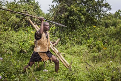 Gorilla safaris in Bwindi
